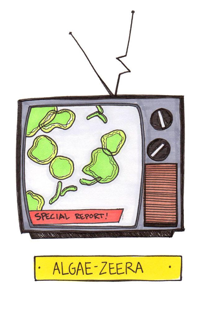 saturday morning cartoons 12 – algae-zeera